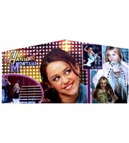 Hannah Montana Banner