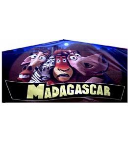 Madagascar Banner